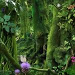 Henri Rousseau e Ruud van Empel: la Natura si meraviglia